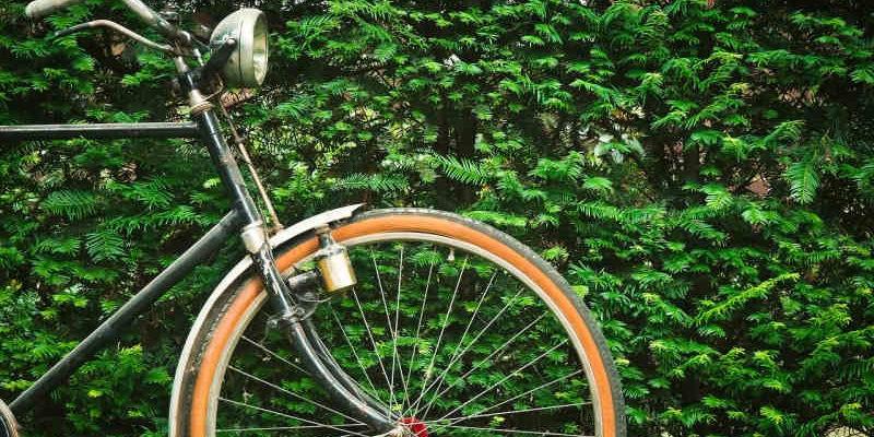 Radtour: Potsdams Gärten & Freundschaftsinsel @ Schleuse Kleinmachnow