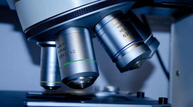 MHB stärkt Gesundheitsforschung in Brandenburg