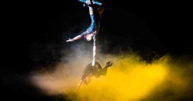 zirkus altoff köllner in Ludwigsfelde
