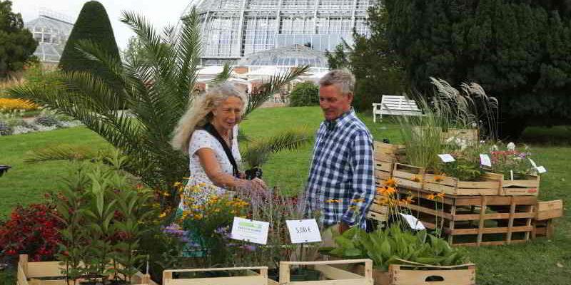 Staudenmarkt @ Botanischer Garten
