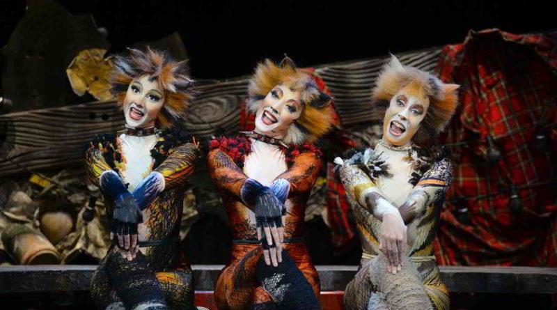 Cats Musical Im Admiralspalast Berlin