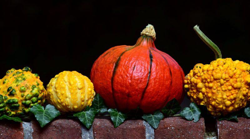 Pumpkin_(Image by ulleo [CC0 Public Domain], via Pixabay)