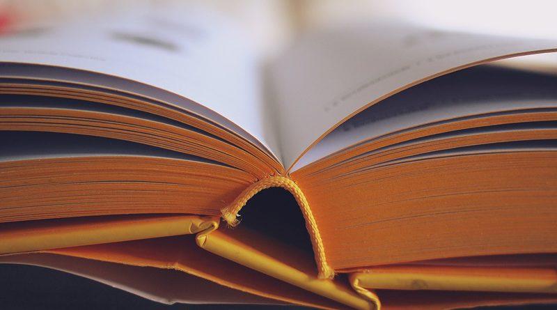 Book (Image by StockSnap [CC0 Public Domain], via Pixabay).jpg