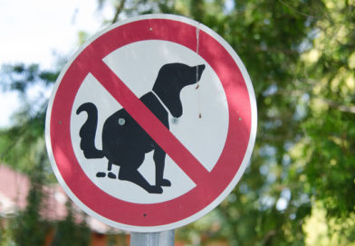Verbotsschild Hundekot (c) Pixabay