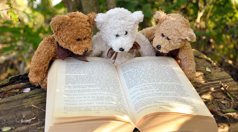 15. Märkische Literaturtage. Noch bis zum 28. April laden Bibliotheken, Kultureinrichtungen und Vereine zu zahlreichen Lesungen und weiteren Programmen ein.