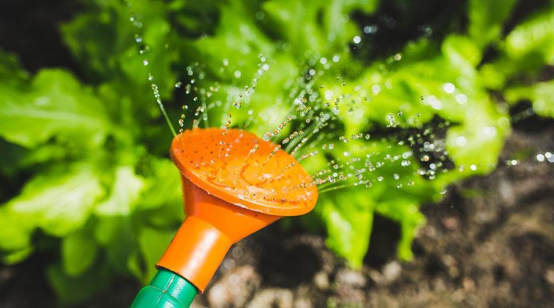 Gartenarbeit Gießkanne (c) Pixabay