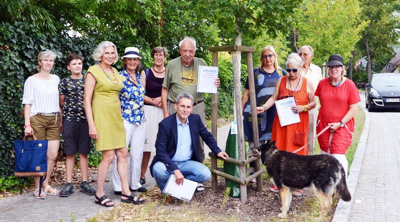 Zum 100. Geburtstag der Gemeinde Kleinmachnow im kommenden Jahr soll die Zahl der Baumpaten von 7 auf 100 steigen. Gestern wurden zwei neue Mitglieder im Kreise begrüßt.