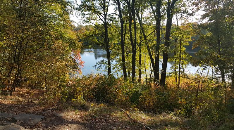 Der Garten der Neuen Hakeburg in Kleinmachnow wurde von der Landschaftsarchitektin Herta Hammerbacher gestaltet. Passend dazu ist am 21. Oktober um 19:00 Uhr ein Vortrag durch den Heimatverein zu hören.