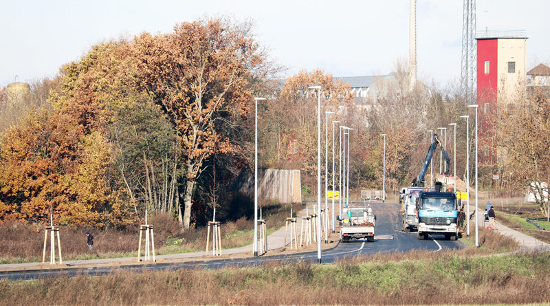 Biomalzspange Stahnsdorf und Teltow: Baumpflanzungen gestartet – Verkehrsfreigabe am 13. Dezember 2019 vorgesehen.