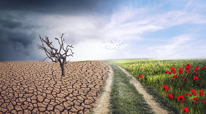 """Am 29. Februar findet in Teltow erstmalig ein """"Klimatag"""" statt. Interessierte Verbraucher erfahren dort Wissenswertes zu allen Fragen rund um einen nachhaltigeren Lebenswandel."""