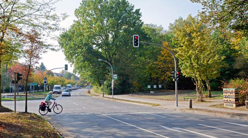 Kommenden Samstag muss in Kleinmachnow die Straße Hohe Kiefer zwischen den Einmündungen Förster-Funke Allee und Werner-Seelenbinder-Straße wegen Baumfällungen für den Autoverkehr voll gesperrt werden.