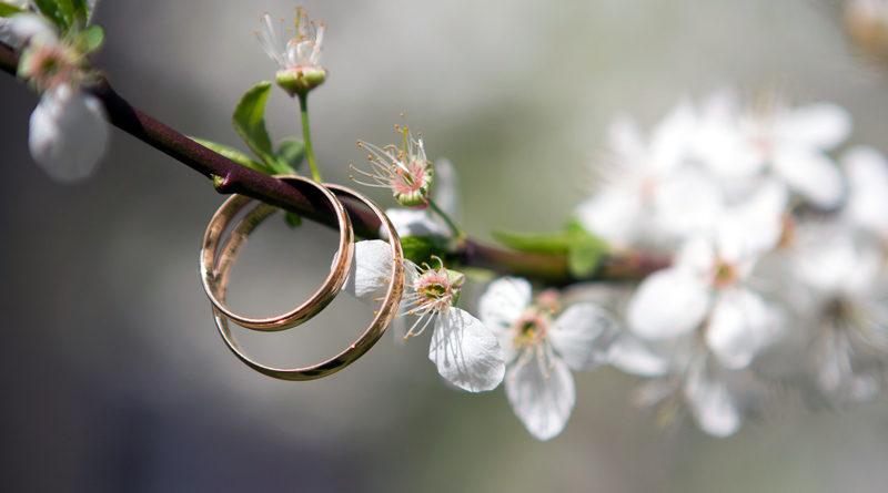 Keine Hochzeiten in Teltow wegen Coronavirus